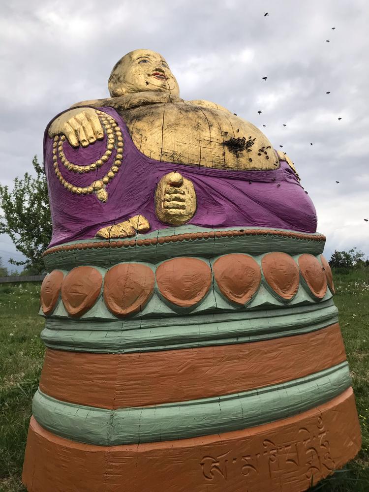 Die Bienen beim Einzug in den Golden Buddha