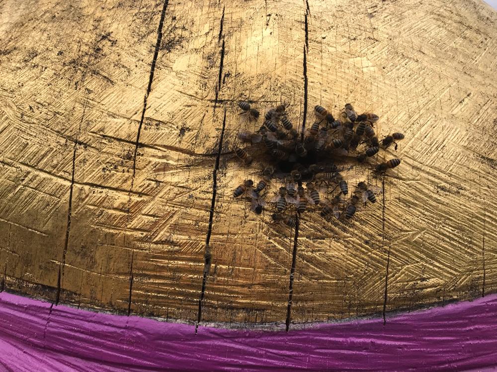 Prall gefüllt, der Bauch des Bienen Buddhas