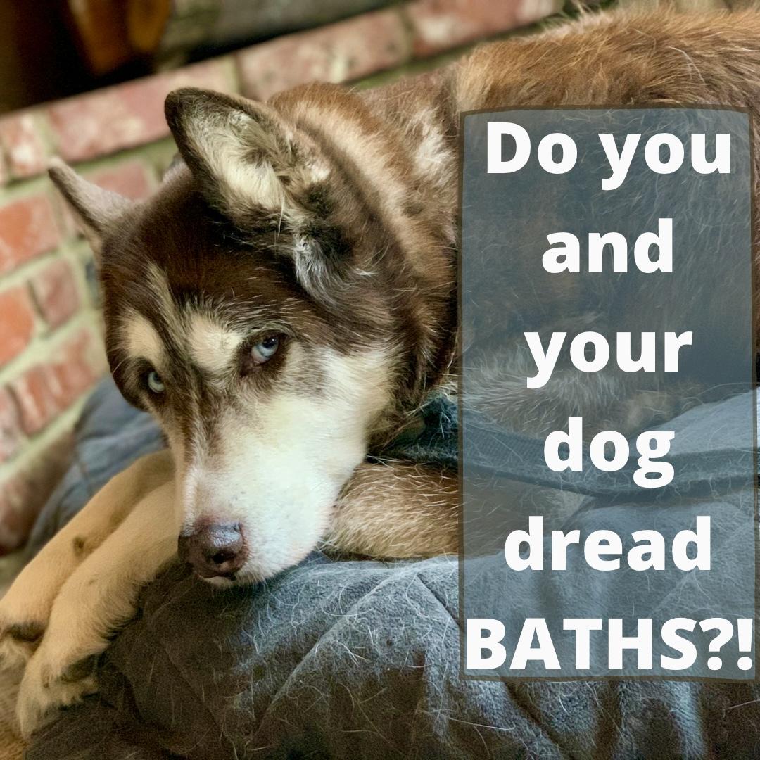 Your dog hate baths?