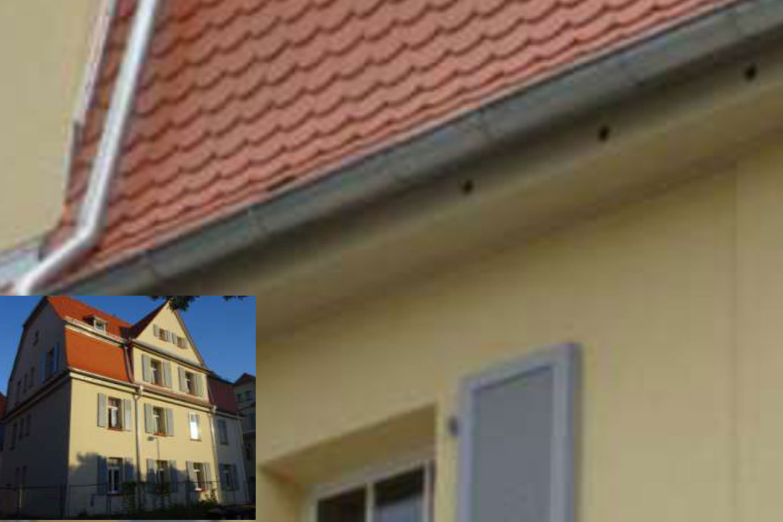 Riederwald: Wettergeschützte Einflüge unter der Dachrinne im Taufkasten. Foto: Ingolf Grabow