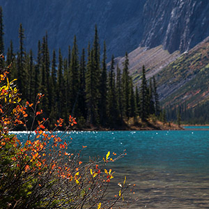 Mountain Lake, Jasper National Park, Autumn Colors, Turquoise Lake, Alberta, Canada