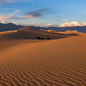 Death Valley Sanddunes Warm Light, Stovepipe Wells, National Park, California, USA