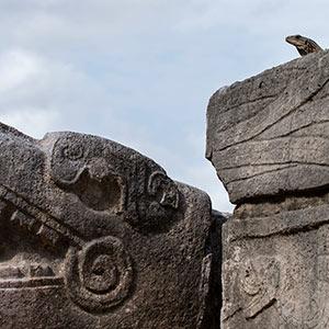Maya Temple Chichen Itza, Yucatan, Dragon, Lizard, Mexico