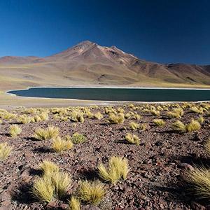 Colorful Laguna Miscanti, San Pedro de Atacama, Altiplano, Andes, Chile, South America