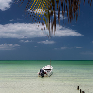 Yucatan Peninsula, Gukf of Mexico, Holbox Island with turquoise water boat and palm tree, Mexico