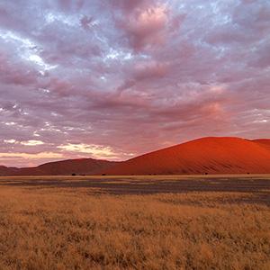Afterglow, Sossusvlei Sand Dunes glowing red sunset, Namib Desert, Namibia Naukluft Park, Namibia, Africa