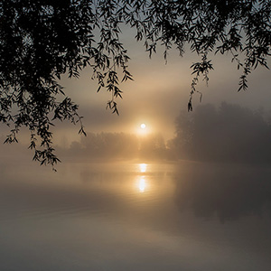 Mystic Sunrise, sun rising at early morning through fog at the beautiful Leeheim Lakes, Ried, Hessen, Germany
