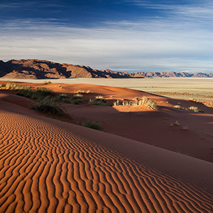 Wide Land, Namibia Naukluft Park in afternoon light with red san dunes, Namibia, Africa