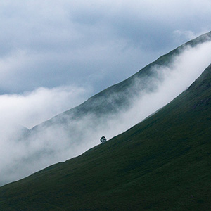 Highlands, Fog & Mist in the Highlands, Scotland, United Kingdom