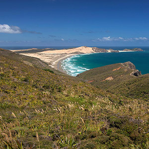 Great Exhibition Bay Northern Island, Sand Beaches, Cape Reinga, New Zealand