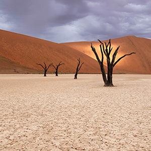 Raindrops, dunes illuminated after rain in the desert, Dead Vlei, Sossusvlei, Namib Desert, Namibia, Africa