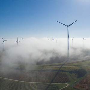 Wind Energy with Morning Fog and Autumn Colored Wine Plants, Germany, Europe