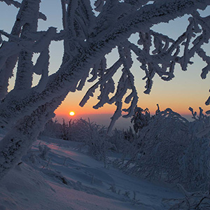 Winter Colors, beautiful orange colors with snowy ice trees, Feldberg, Taunus Mountains, Hessen, Germany