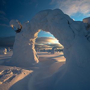 Snowy Landscape, Finland, Lapland, Riisitunturin National Park near Posio