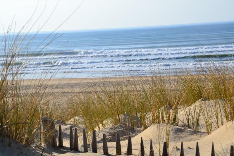 Vue sur l'océan depuis la dune à Moliets et Maâ