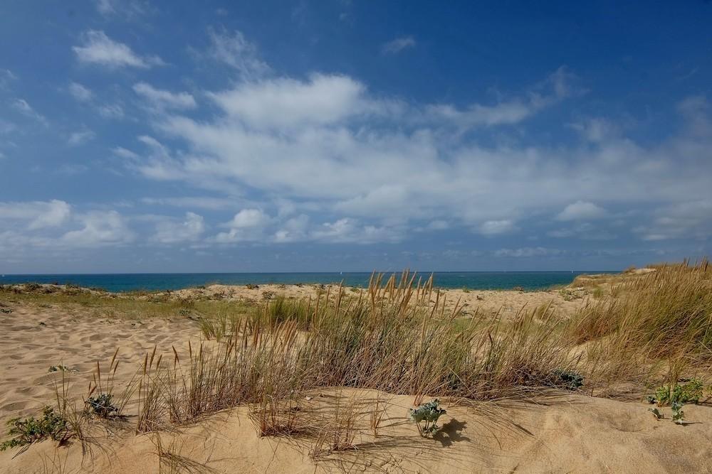Dune... La Nature protégée