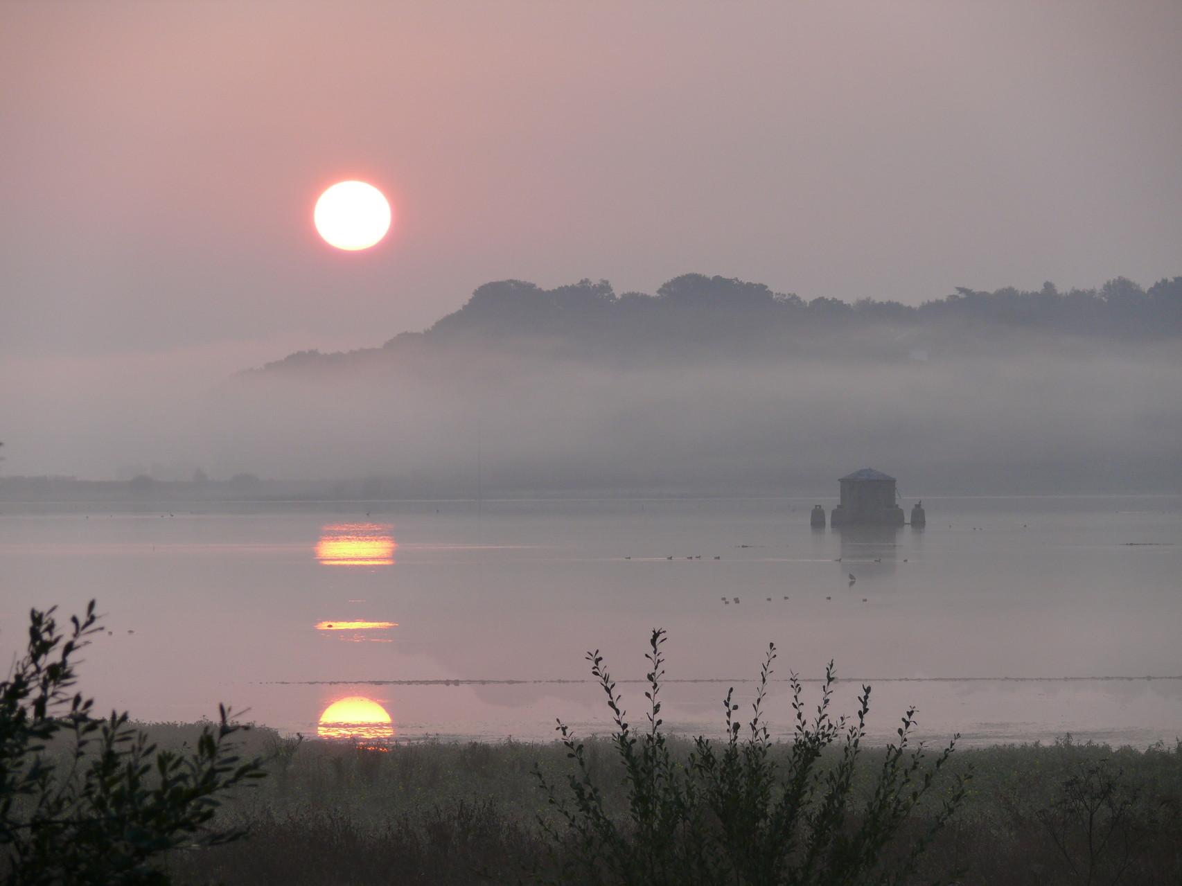 Le Marais d'Orx au coucher du soleil