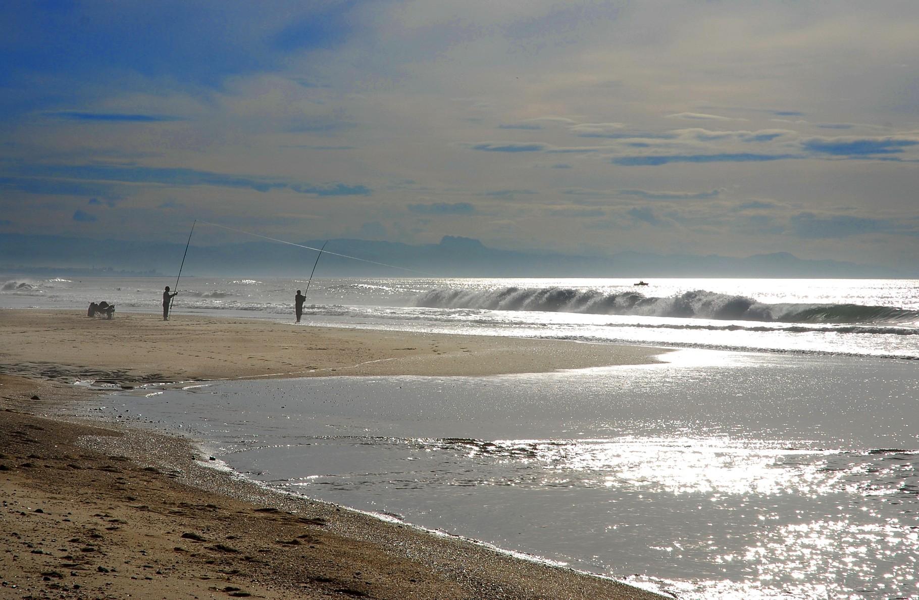 Pêche... Le surfcasting