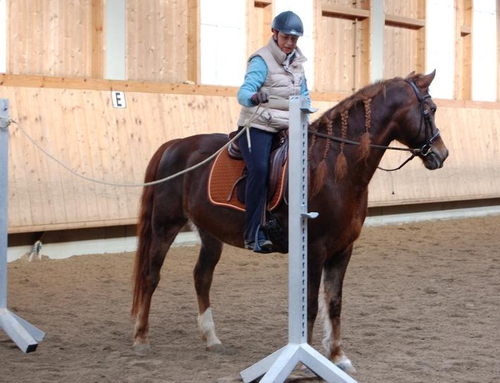 Fast 20-jährig bei einem Working Equitation Kurs mit Mihai Maldea