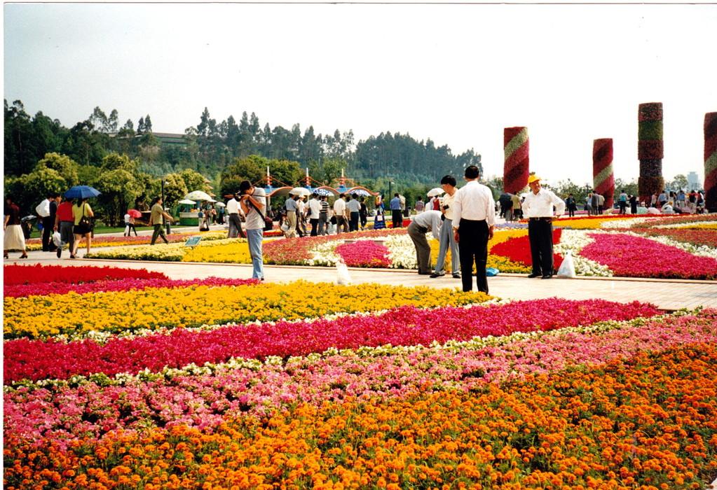 Kunming expo fiori 1999