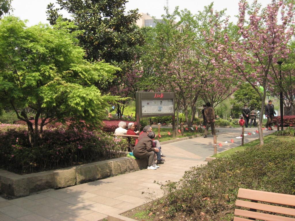 vialetto sichuan park