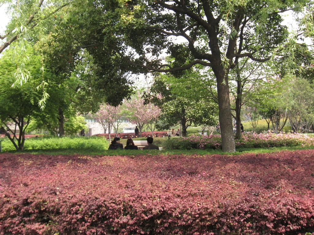 sichuan park