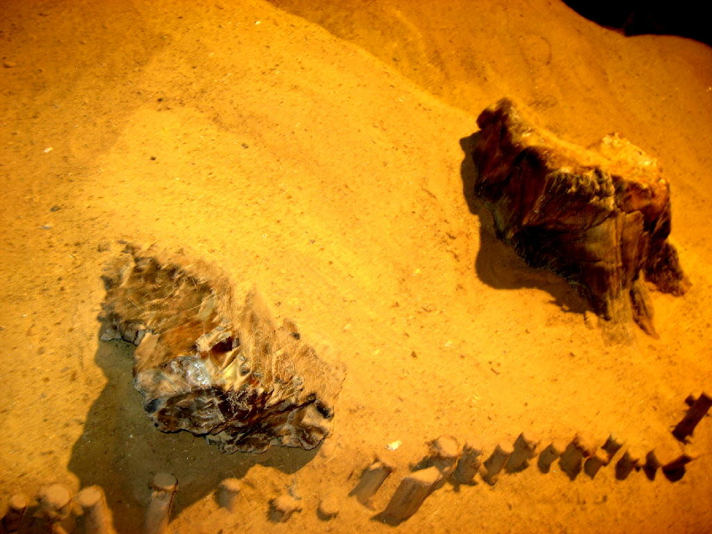 sabbia e rocce