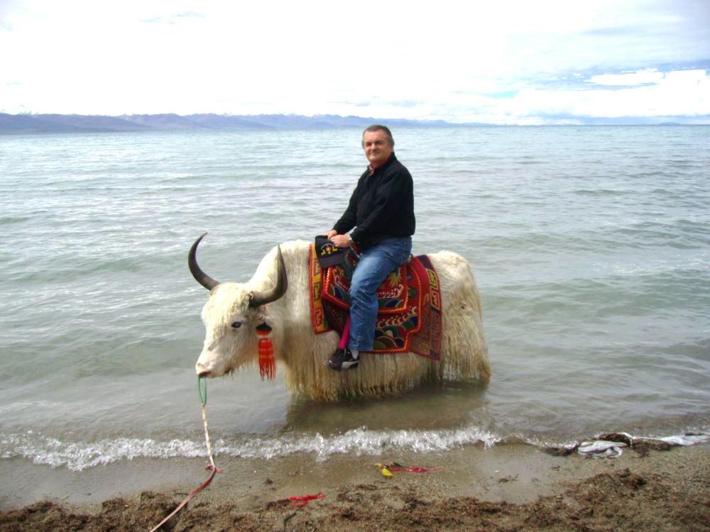 Beppe su yak al lago Namtso  4700mt.