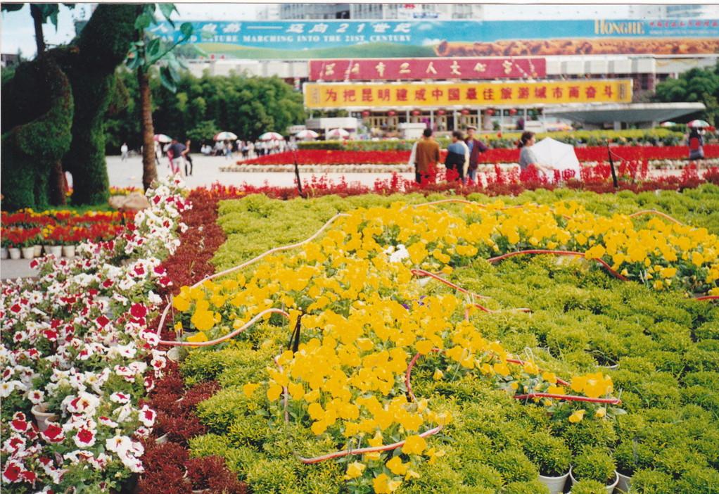 Kunming parco