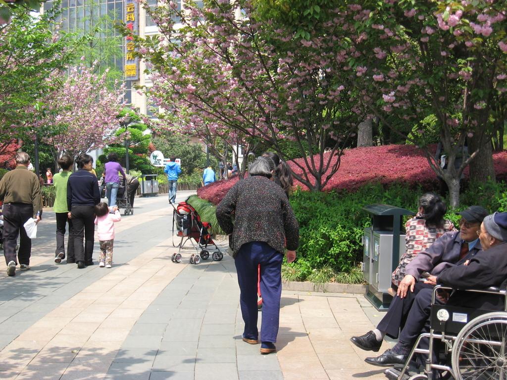 sichuan park relax