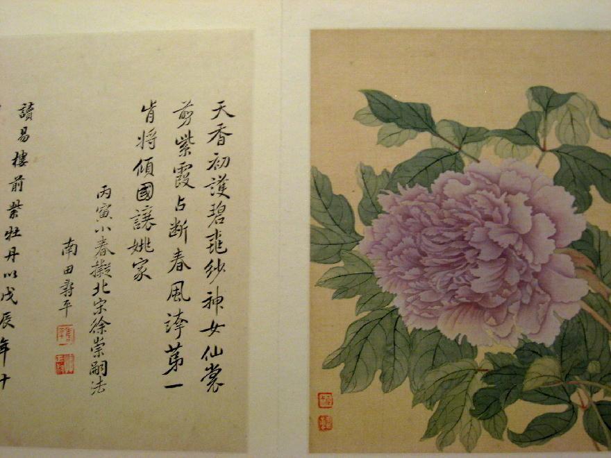 dipinto dinastia Qing  清朝 ( 1644-1911 ) - peonia 牡丹