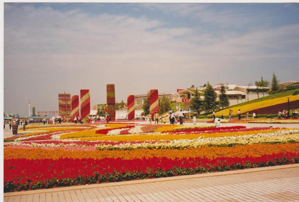 Yunnan - kunming - Expo 1999 fiori