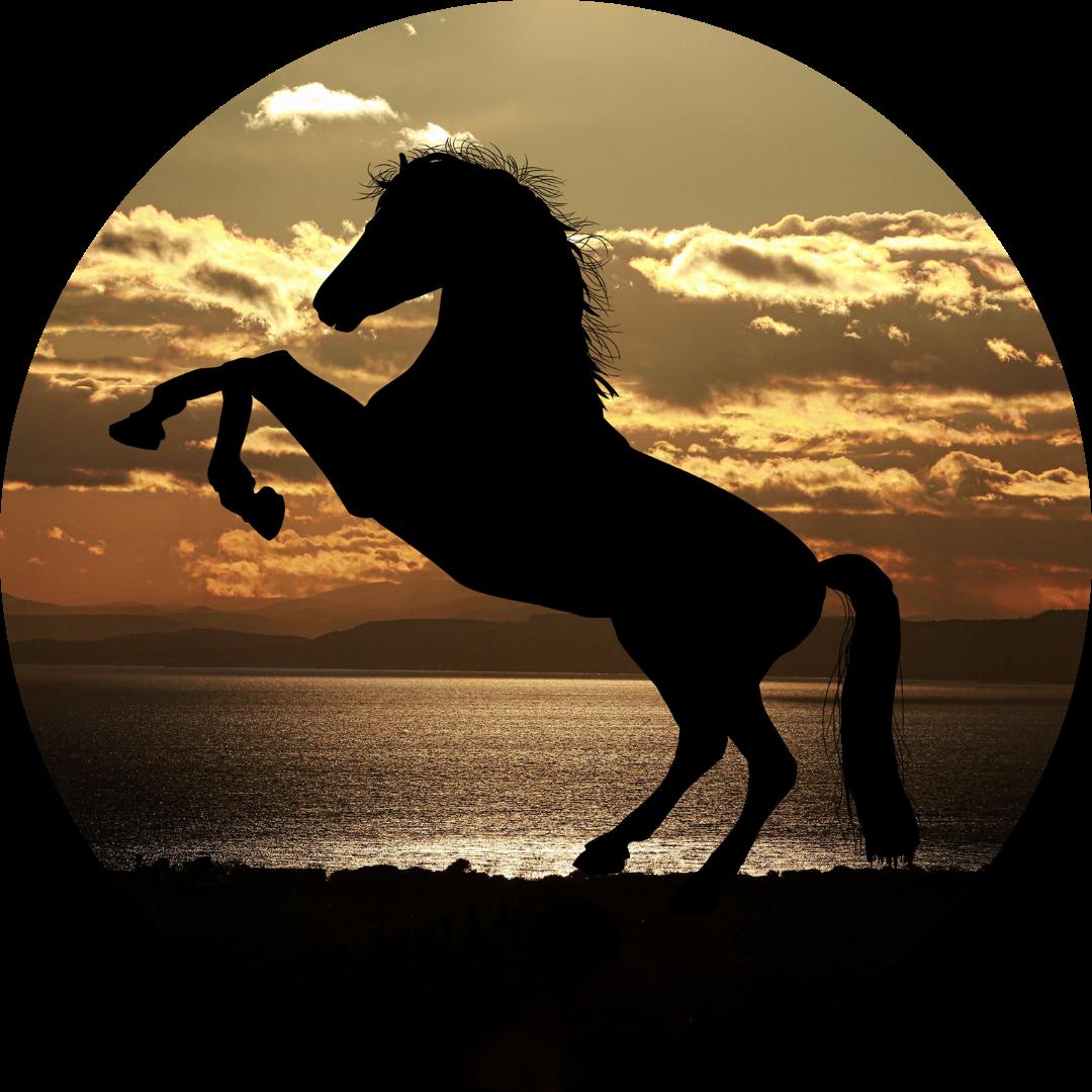 Was haben drei schwarze Streifen, ein steigendes Pferd und ein angebissener Apfel gemeinsam?