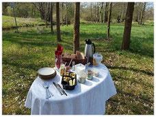 Picknick im Spreewald bei einer Kahnfahrt