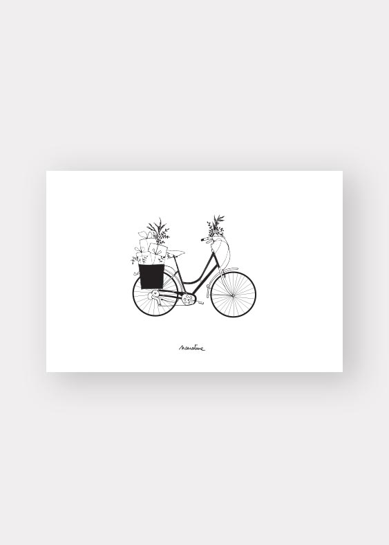 cado-vélo