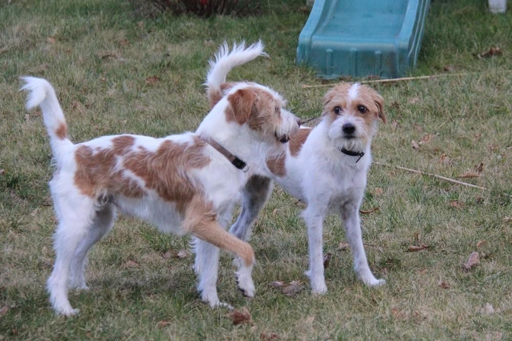 Olsen & Nuby