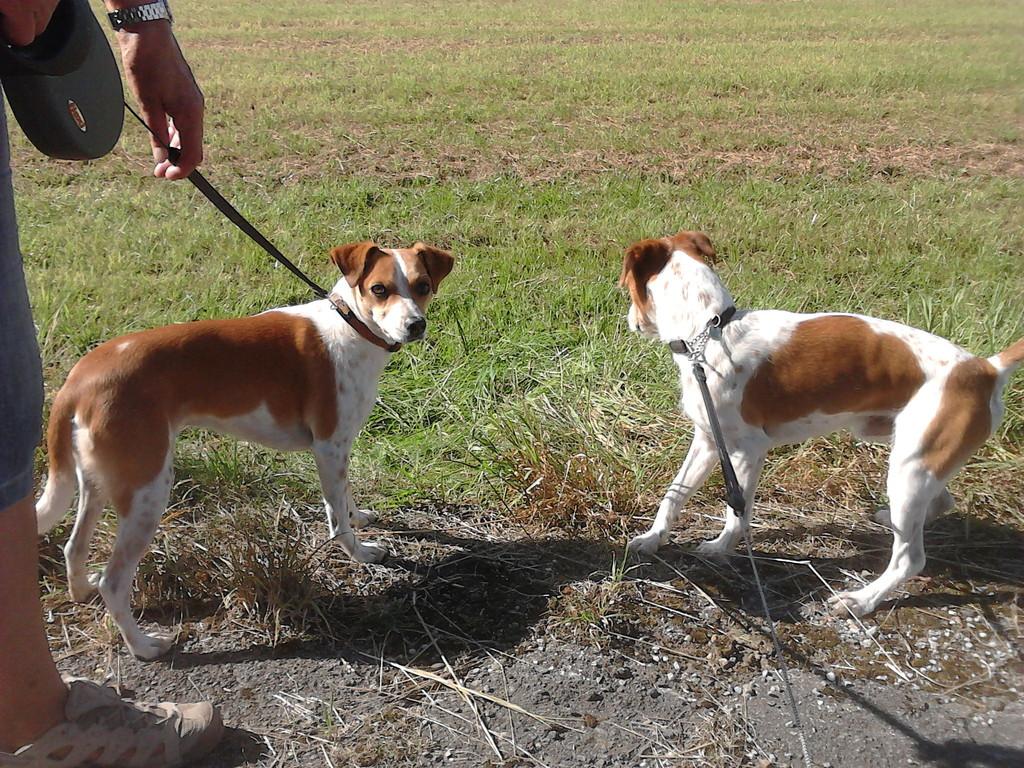 Alma (links) und Adelino