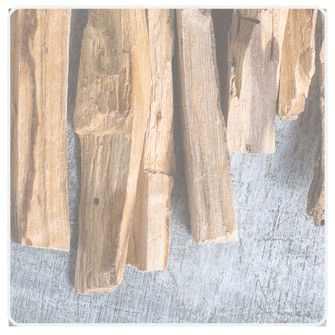 Foto zeigt Palo Santo - Räucher Holz
