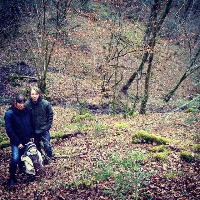 Les gérants du groupement forestier Avenir Forêt dans la forêt de Limoges.