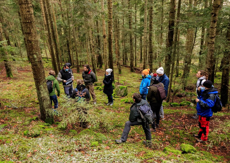 Avenir Forêt a réalisé une journée de formation avec le groupement du Cerf-Vert
