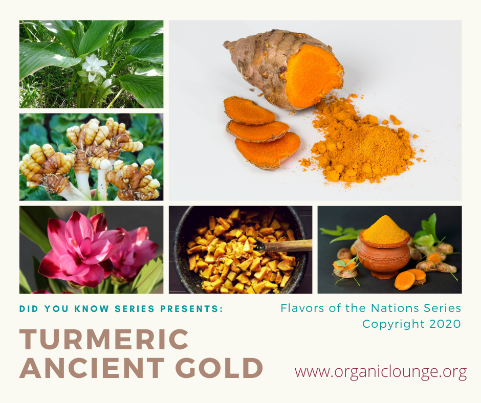 Turmeric, Ancient Gold