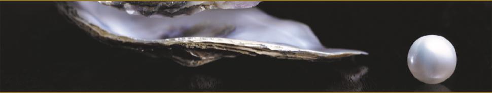 Perlen Juwelier Heming