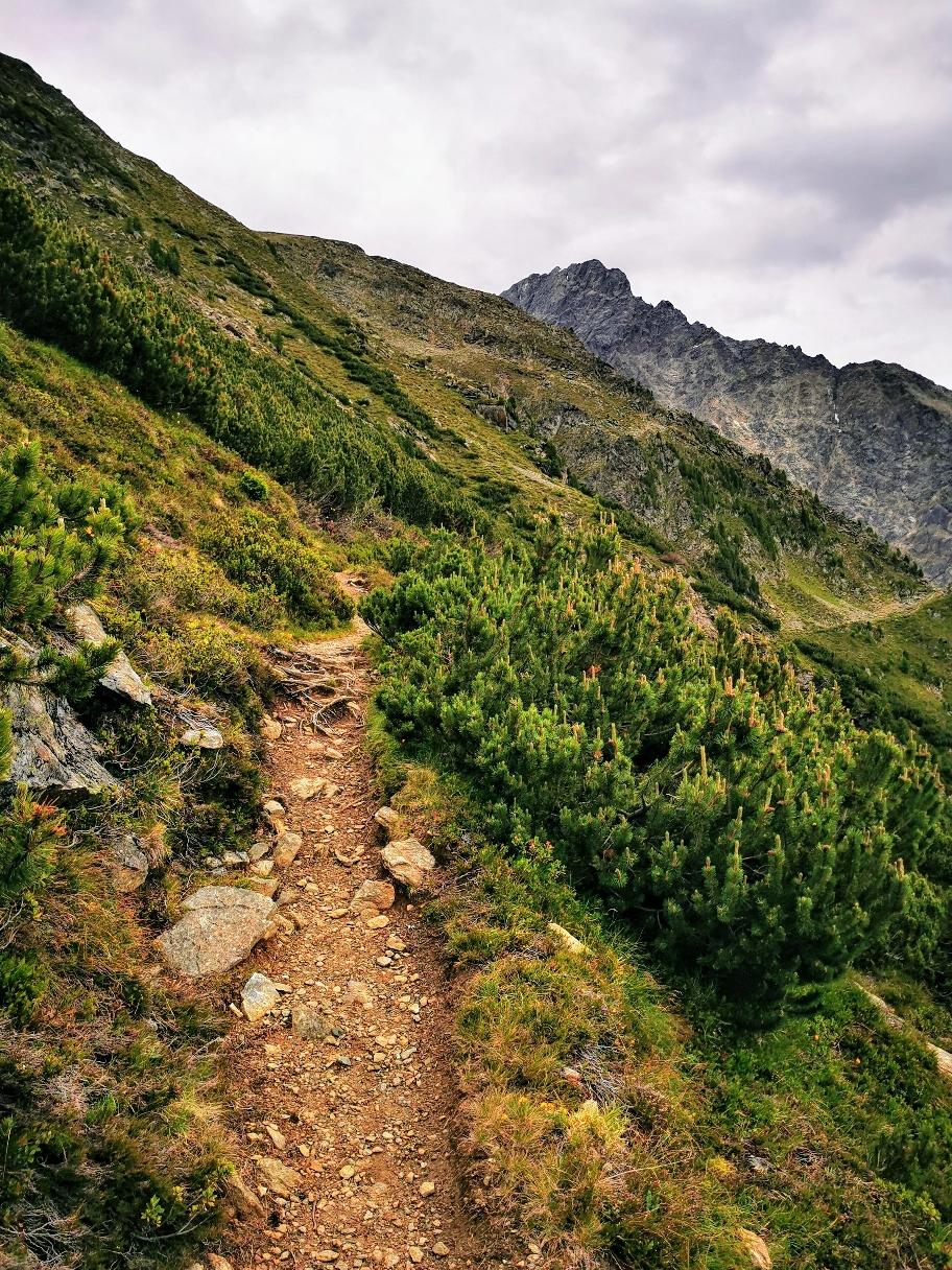 Der Weg zieht weiter am Hang entlang