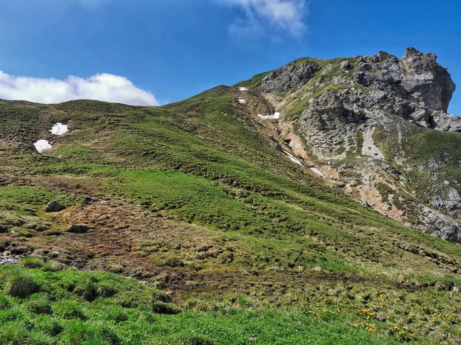 Weglos geht es diesen Grashang hinauf, rechts der Gipfel