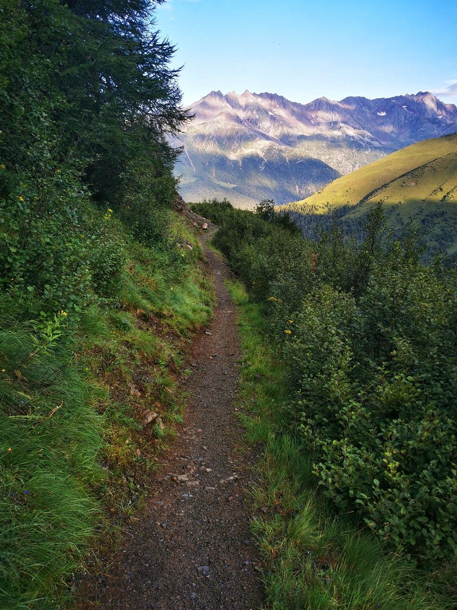 Bald geht der Weg in einen kleinen Bergpfad über
