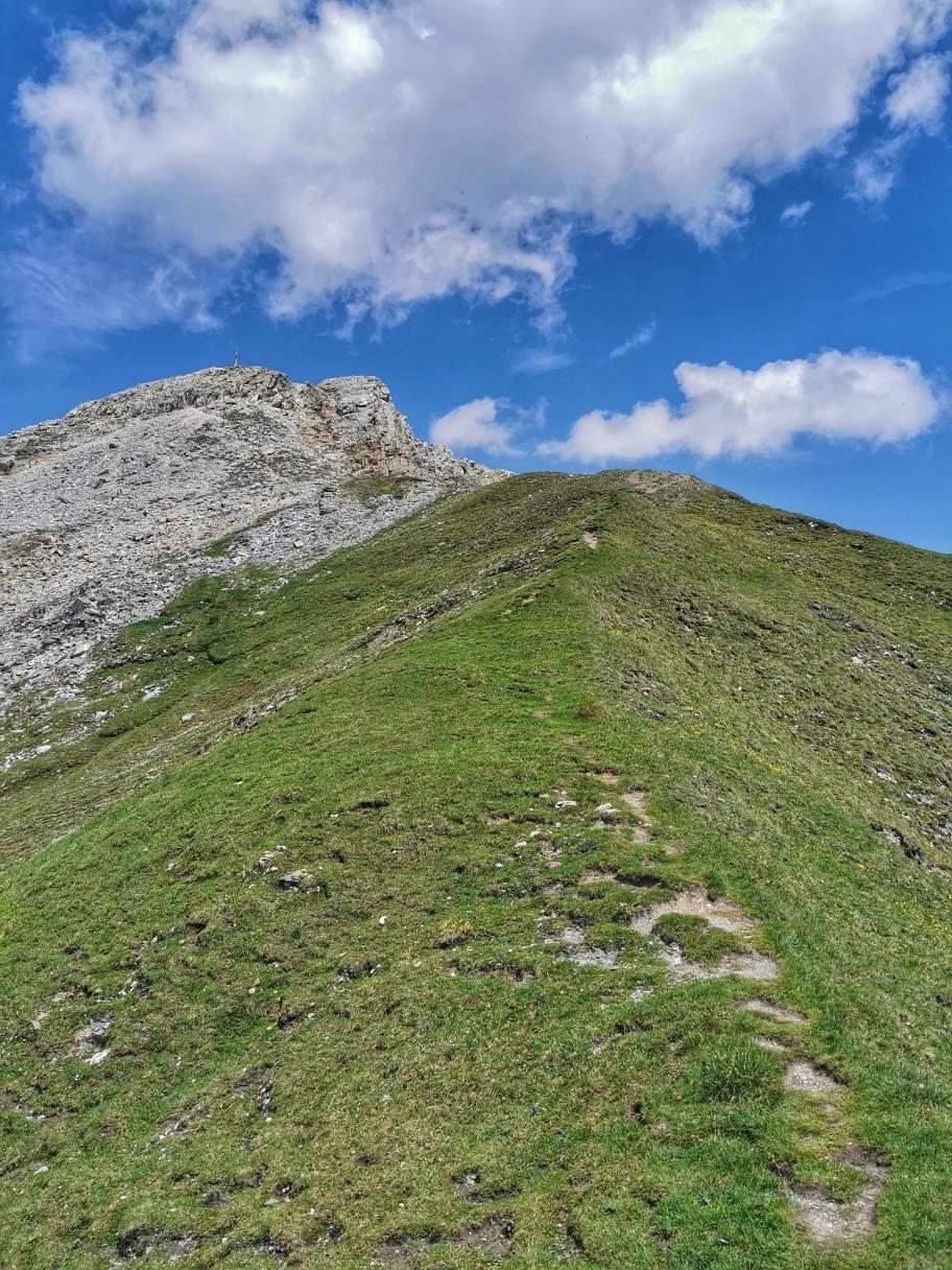 Der Gipfel der Weißspitze ist schon in Sicht
