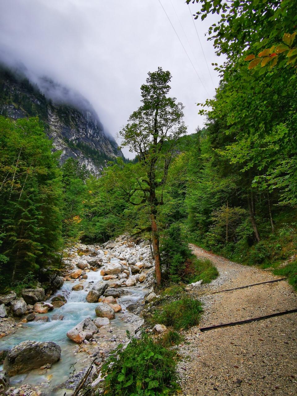 Schöner Weg entlang des Hammersbachs