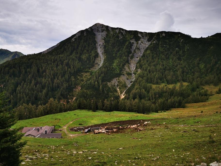 Die Malga Sanguinera auf 1.900m