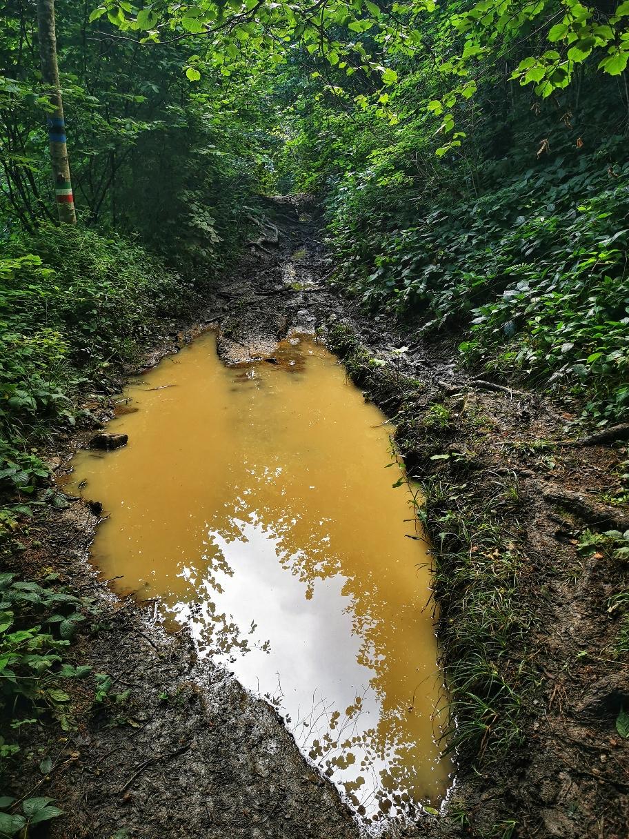 Auf teilweise überschwemmten Wegen...