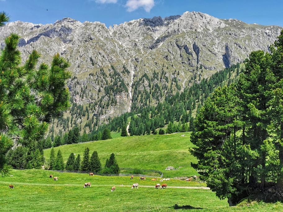 Alpenidylle beim Abstieg von der Schlüterhütte